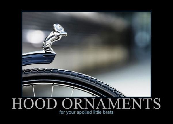 Hood Ornaments Motivational Pictures